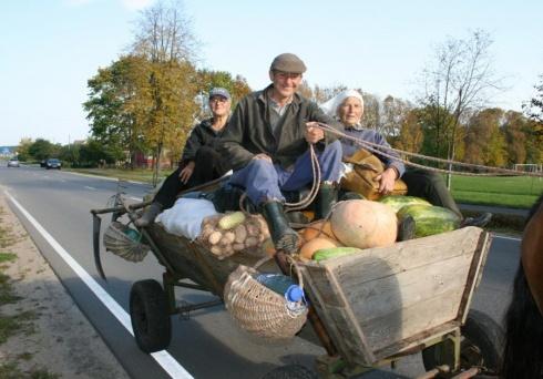 Taip linksmai rudens gėrybes į namus gabena merkiniškiai.